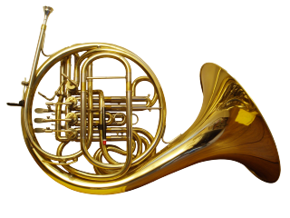 French Horn Lessons with Robin at lakewoodschoolofmusic.com 303-550-7010